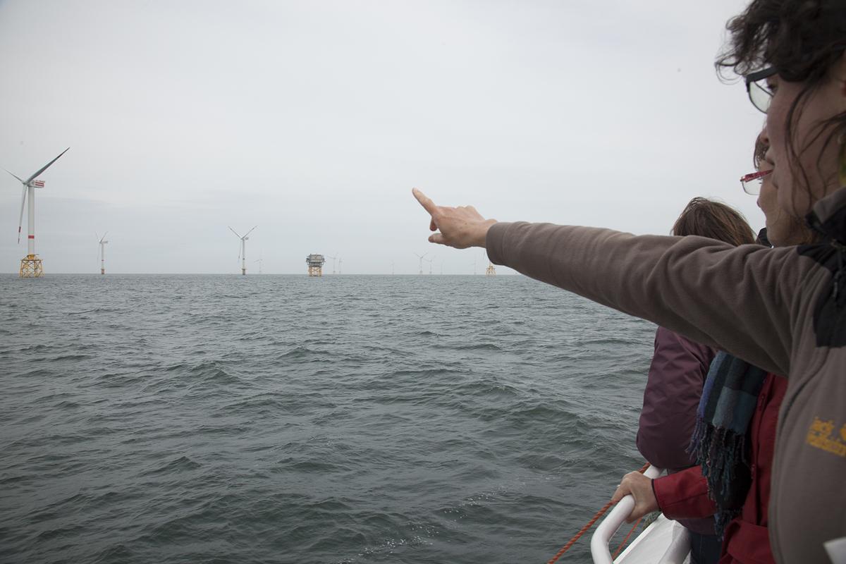 Turbines Ahoy!